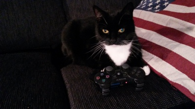 My Cat is a Gamer 2014